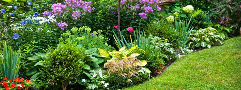 blomsterbed plejet af anlægsgartner på Lolland og Falster